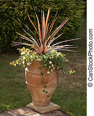 Terracotta Pot with Summer Flowers