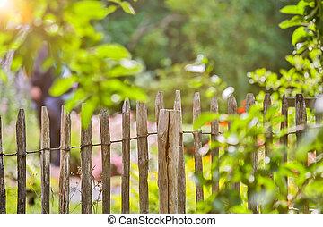 garden fence summer background