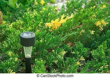 Garden flashlight