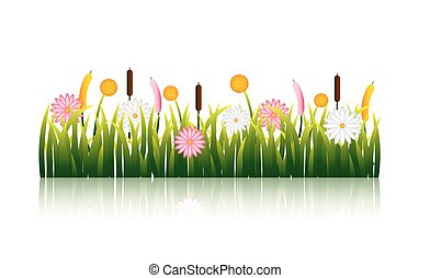 garden flowers and grass field
