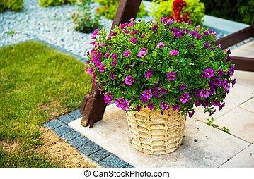 Garden Flowers Decoration