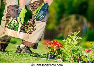 Garden Flowers Planting