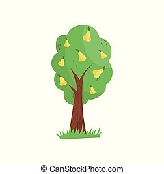 Garden fruit tree full of yellow pears. Agricultural plant. Concept of organic farm food. Natural product. Icon in cartoon style. Colorful flat vector design