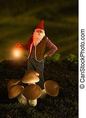 Garden gnome at night