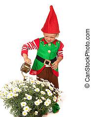 Garden gnome boy with daisies