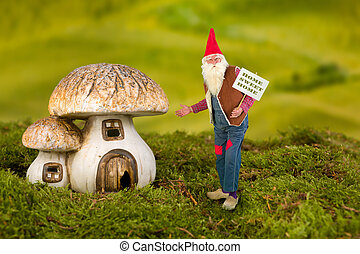 Garden gnome with toadstool