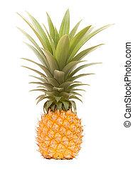 Garden grown totally organic pineapple
