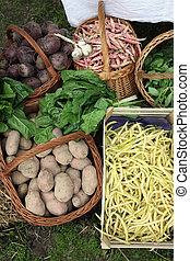 Garden harvest of homegrown produce, exposed for sale in ...