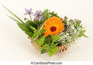 garden herbs basket