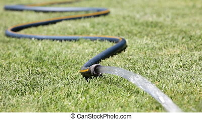 Garden Hose - Watering the lawn with a garden hose