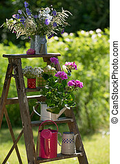Garden idyll - Colorful watering cans on a wooden ladder