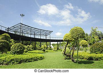 Garden in a sunny day