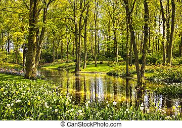 Garden in Keukenhof, tulip flowers, pond and trees. Netherlands