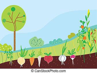 Garden in spring with vegetables background