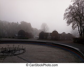 garden in the fog during the day