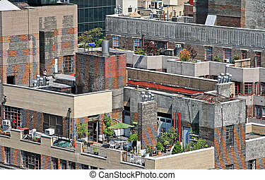 Garden in the top of a building