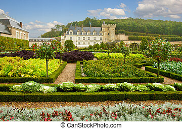 garden in Villandry chateau, France
