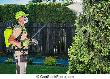 Garden Insecticide by Spraying