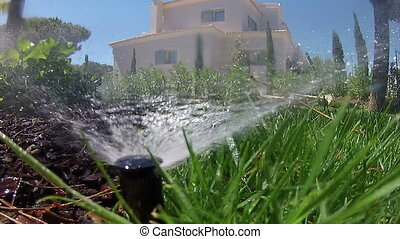 Garden Irrigation Sprinkler watering lawn (Point of View footage - shot A - Loopable)