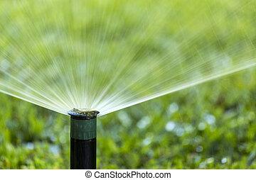 Garden Irrigation system spray watering lawn. - Garden ...