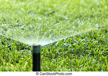 Garden Irrigation system spray watering lawn.