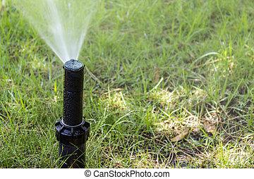 Garden Irrigation system sprinkler watering lawn.