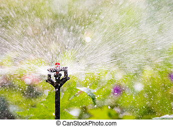 Garden irrigation with an automatic watering system