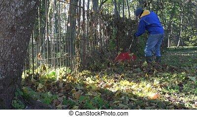 garden keeper man tidying leaves in garden. 4K