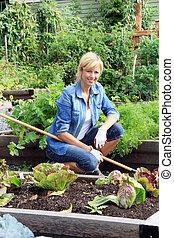 garden., légume, femme, jardinier