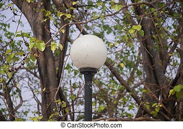 garden lamp on the background of tree