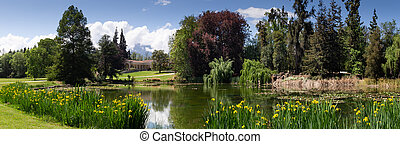Garden landscape. Panoramic wiev. Beautiful Garden with pond.