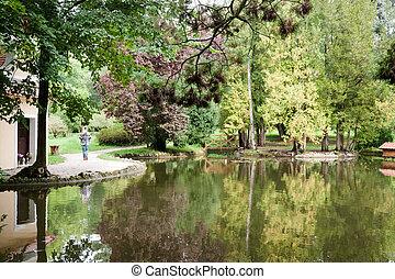 Garden landscape with pond