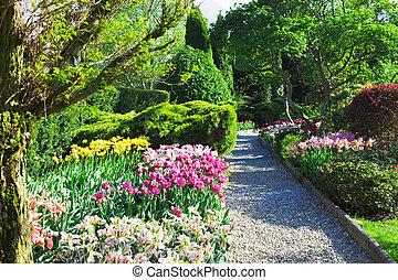 garden., landscaped, bunte, förmlichkeit