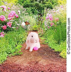 garden., lapin pâques