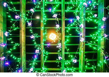 garden night scene at christmas time in the carolinas
