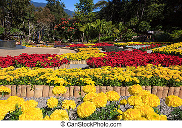 Garden of Doi Tung Royal Villa and Mae Fah Luang Garden. -...
