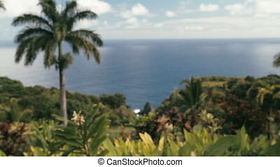 Garden Of Eden, Maui, Hawaii - 1080p, Landscapes of Hawaii,...