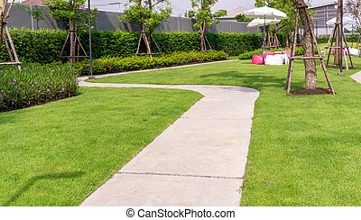 Garden of gray curve pattern walkway concrete paving on green grass lawn