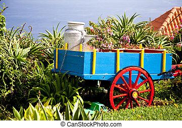 Garden on Madeira in Portugal