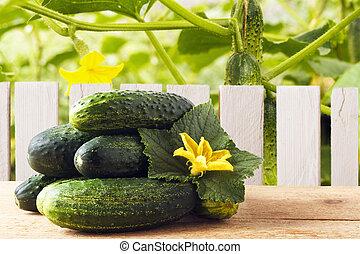 garden., organique, frais, espace, bois, concept., concombres, rustique, sain, diététique, nourriture, table, style de vie, copie, nutrition.
