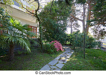 Garden palm trees, maritime pines and villa in a sunny summer day, Italy