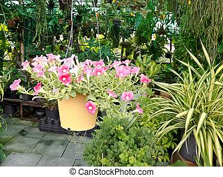 garden park scene