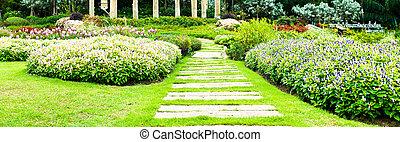 garden., parkosít, út