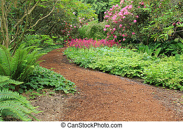 Beautiful woodland garden path in springtime.