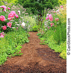 Pretty Path In An English Cottage Garden