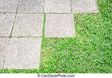 Garden path with grass growing up the stones