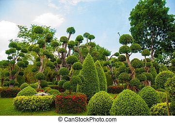 Garden - Exotic botanical garden in the North of  Thailand