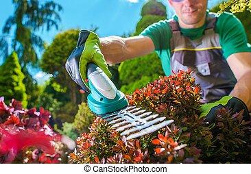 Garden Plants Trimming