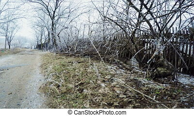Camera on Street between steadicam garden plots