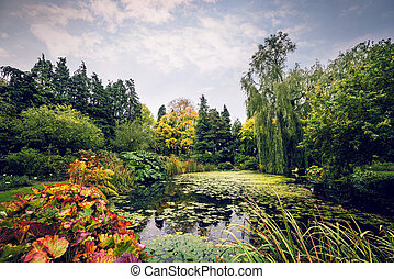 Garden pond with various plants in beautiful colors